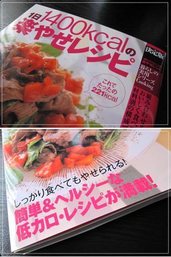 Dietbook1