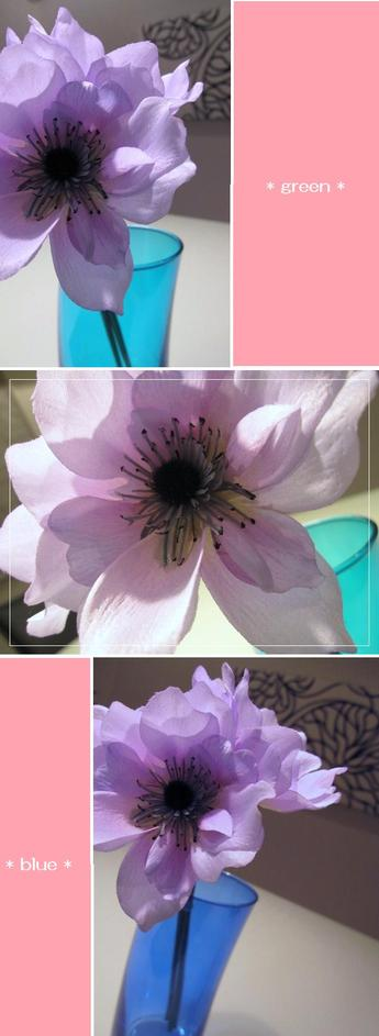 Flowerbase2